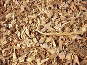 ¿Que es la biomasa?