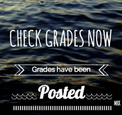 Grades Have Been Posted!
