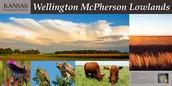 Wellington McPherson Lowlands