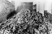 this a pile of jews bodies that either died from disease or starvation.
