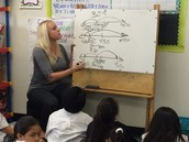Number lines to build number sense & rounding
