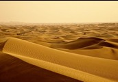 Sand hills are made up of sand being blown into a hill of sand