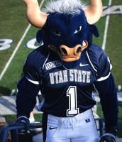Utah's state Mascot