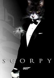 Scorpy: Shaken, not stirred.