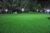 Water youre lawn at night