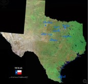 This is where they settled in Texas