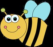 CLASSROOM SPELLING BEE