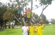 trepados con mis compañeros en un arbol
