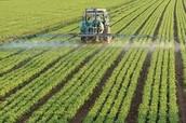 Farm Being Fertilized