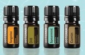 Sunsational Flavors Oil Kit for FREE!