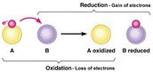 Oxidation-Reduction Reaction