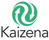 Tool of the Week- Kaizena