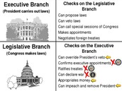 Branch of Government
