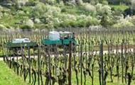 stutgart winery