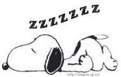 I still want naps