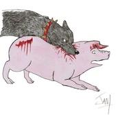 Animal Dogs Killing Animals/ People
