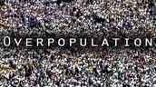 Over population