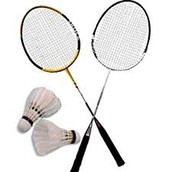 This is a badminton raket and birdy