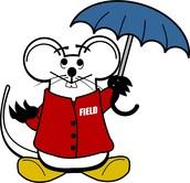 Rainy Day Procedures