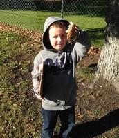 Found a pine cone!