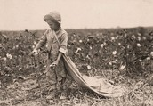 Child Labor How It Has Changed