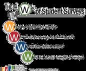 TEI:  Student Surveys