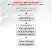 Steps of the naturalization process