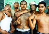 ¿Las pandillas y la inseguridad se han convertido en un dolor de cabeza para Cartagena?