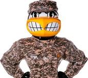 U.S.A. hawk guy