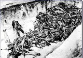 The bodies of Nazi Germany's victims in the ravine.