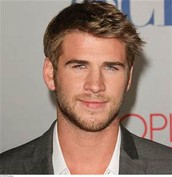 The Hunger Games' Liam Hemsworth as Alex Sheathes