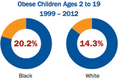 Obese Children Ages 2-19 by race