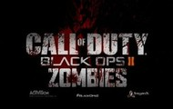 Call of Duty Black ops ll: Zombies