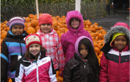 Kindergartners Are Learning About The Season of Fall