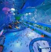 What is Aquatic Adventures?