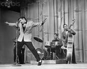 Elvis Presley perfoming