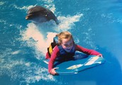 Madison swimming with dolphins