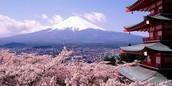 Mt Juji