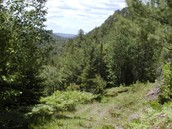 Canadian Wilderness...Wish you were there?