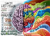 What does the right side of the brain do?