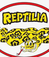 Meet and Greet with animals from Reptilia