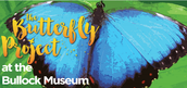 Butterfly Project at the Bullock Museum