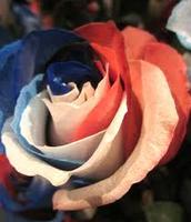 Flowers for grandpas grave