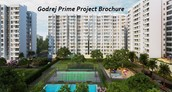 Some Arising Difficulties For Prudent Programs Of Godrej Prime Project Brochure