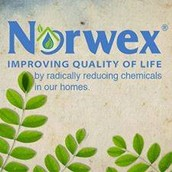 If you place an order, please use the link below for Cindy so that she gets all of her Norwex for FREE!