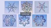 Snowflake Physics