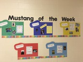 Check Out Our Mustangs of the Week