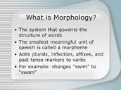 Morphological Disorders
