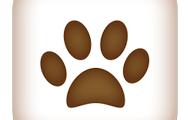Personalised Pet Diary & Photos