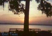Gateway to Texas